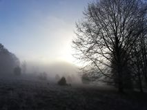 Wintersun στοκ φωτογραφίες