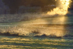 Wintersun landskap, lantlig gryning royaltyfria foton