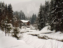 Winterszene in Österreich stockfotografie