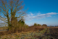 Winterszene über Ackerland in Yorkshire Lizenzfreies Stockfoto