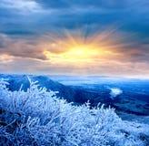 Winterszene in den Bergen lizenzfreie stockfotografie