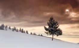 Winterszene in den Bergen Lizenzfreie Stockbilder