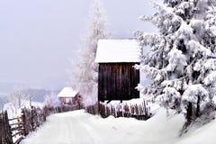 Winterszene in der Karpatenberg-, Fern- und rauenumwelt Stockfotos