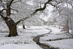 Winterszene des Weges und des Baums bedeckt im Schnee Lizenzfreie Stockbilder