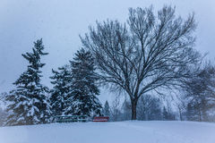 Winterszene in Kanada Stockbilder