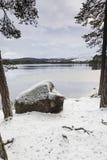 Winterszene in Loch Garten in Schottland Stockfoto