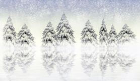 Winterszene mit schneebedeckten Kiefern Lizenzfreies Stockbild