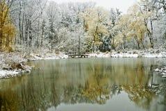 Winterszene mit Teich und Bäumen Lizenzfreie Stockfotos