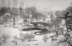 Winterszene in New York City: Schneesturm im Central Park Stockbilder