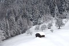 Winterszene in Rumänien, schöne Landschaft von wilden Karpatenbergen Stockbilder