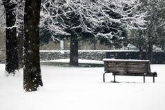 Winterszene - Schneefälle im Park stockfotografie