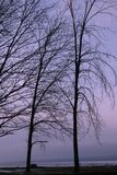 Wintertag Stockbild