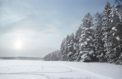 Wintertag Stockfoto