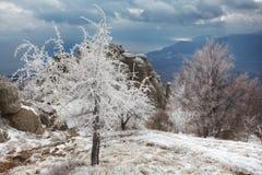 Wintertag in den Bergen Stockbild