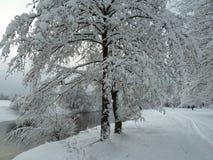 Wintertag durch den Fluss Lizenzfreie Stockfotografie