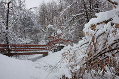 Wintertag im Park Kolomenskoye, Moskau, Russland Lizenzfreie Stockfotos