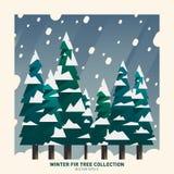 Wintertannenbaumsammlung Stockbild