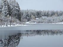 Winterteich Stockfotos