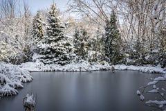 Winterteich bedeckt mit silbernem Eis Um den Teich gibt es Koniferenbäume und Fichten stockbild
