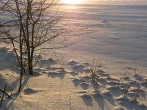 Wintertijd Royalty-vrije Stock Afbeeldingen