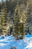 Wintertijd Royalty-vrije Stock Afbeelding