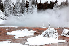 Wintertijd in Nationaal Park Yellowstone stock afbeeldingen