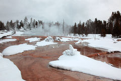 Wintertijd in Yellowstone NP Stock Foto's