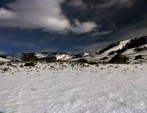 Wintertijdbeeld in het Nationale Park van Yellowstone Stock Foto's