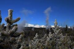 Wintertijdbeeld in het Nationale Park van Yellowstone Stock Afbeelding