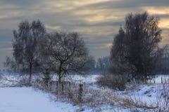 Wintertijdzonsondergang over weide Royalty-vrije Stock Fotografie