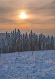 Wintertime στο εθνικό πάρκο Harz, Γερμανία Στοκ εικόνα με δικαίωμα ελεύθερης χρήσης