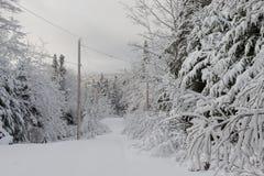 Wintertime в Новой Шотландии стоковое фото rf