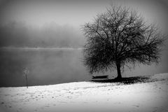 Wintertime рекой Стоковая Фотография