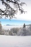 Wintertime Stock Photos