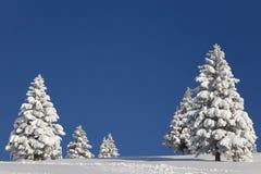 wintertime Στοκ εικόνα με δικαίωμα ελεύθερης χρήσης