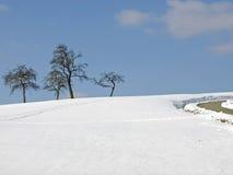 wintertime Royaltyfri Foto