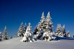 Wintertime Royalty Free Stock Photos