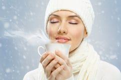 Wintertime Stock Image