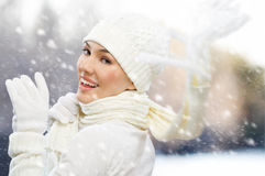 Wintertime Royalty Free Stock Image