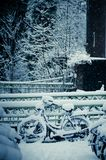 Wintertime Stock Photography