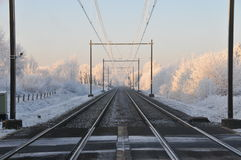 Wintertime. Royalty Free Stock Image