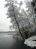 wintertime Royaltyfri Bild
