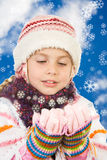 Wintertime Foto de Stock Royalty Free