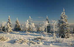 Wintertime. Serlich, Czech republic, early morning Royalty Free Stock Photo