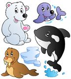 Wintertime animals collection 1. Vector illustration Royalty Free Stock Photography