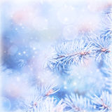 Wintertime background Stock Images