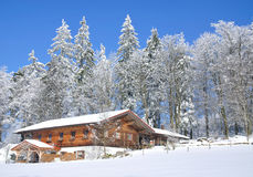 Wintertime in Bavarian Forest Stock Photography