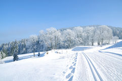 Wintertime in Bavarian Forest,Bavaria,Germany Royalty Free Stock Photos