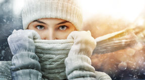 Wintertime Royalty Free Stock Photography