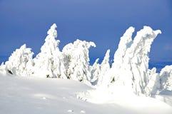 Wintertime,Brocken,Harz Mountains,Germany Stock Image